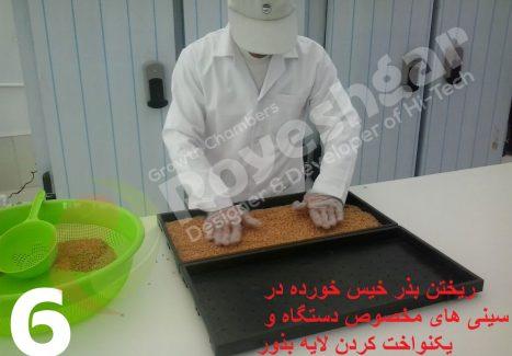 مراحل تولید جوانه خوراکی در دستگاه تولید جوانه رویشگر